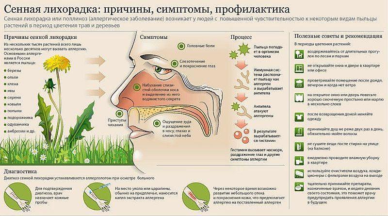 Картинки по запросу лечение аллергии