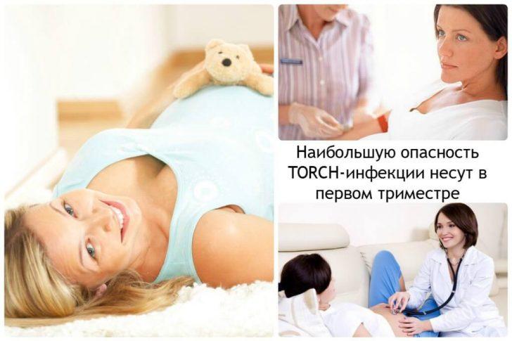 Наибольшую-опасность-TORCH-инфекции-несут-в-первом-триместре-1024x683
