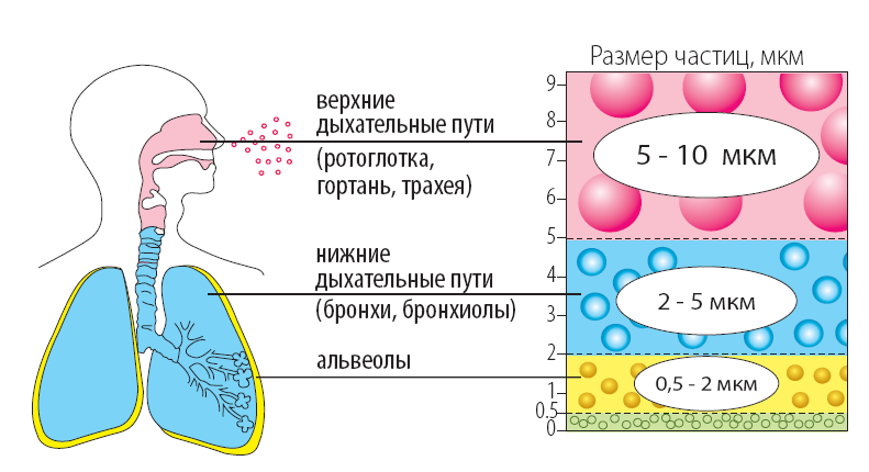 astma-rabota-ingalatora