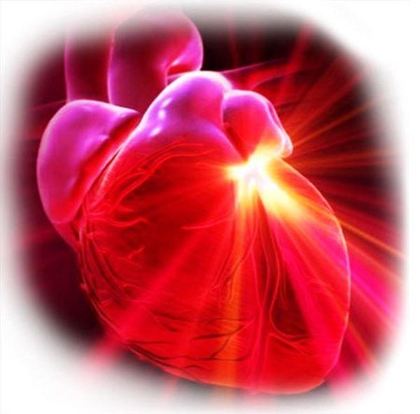 Приобретенные пороки сердца у детей и взрослых - причины ...