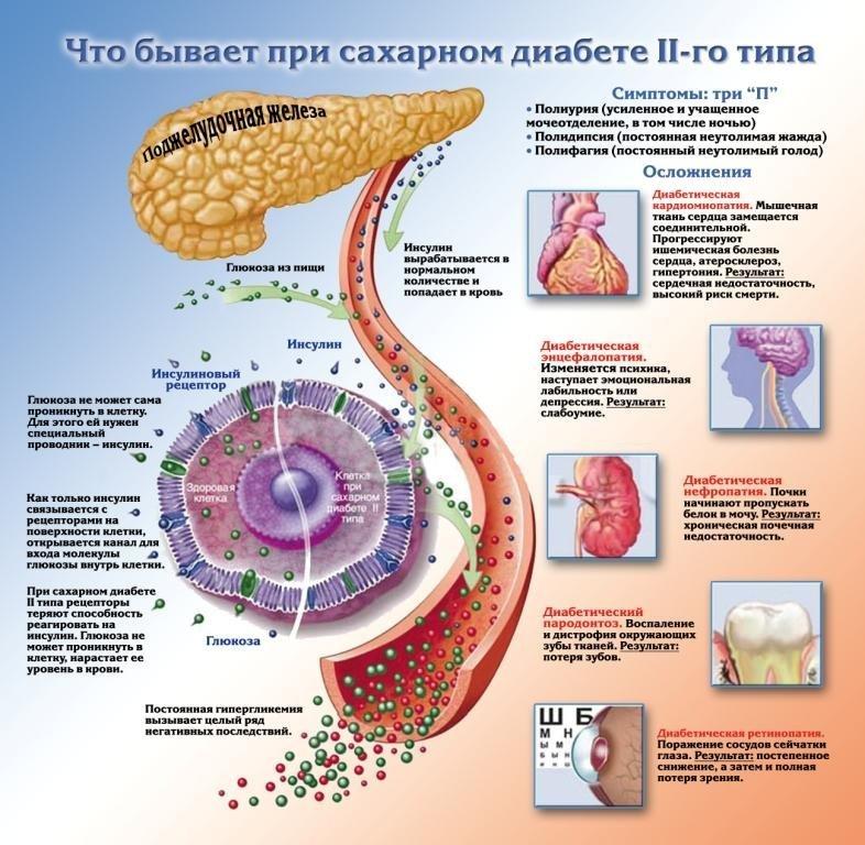 Повышен холестерин лпнп в крови что это значит