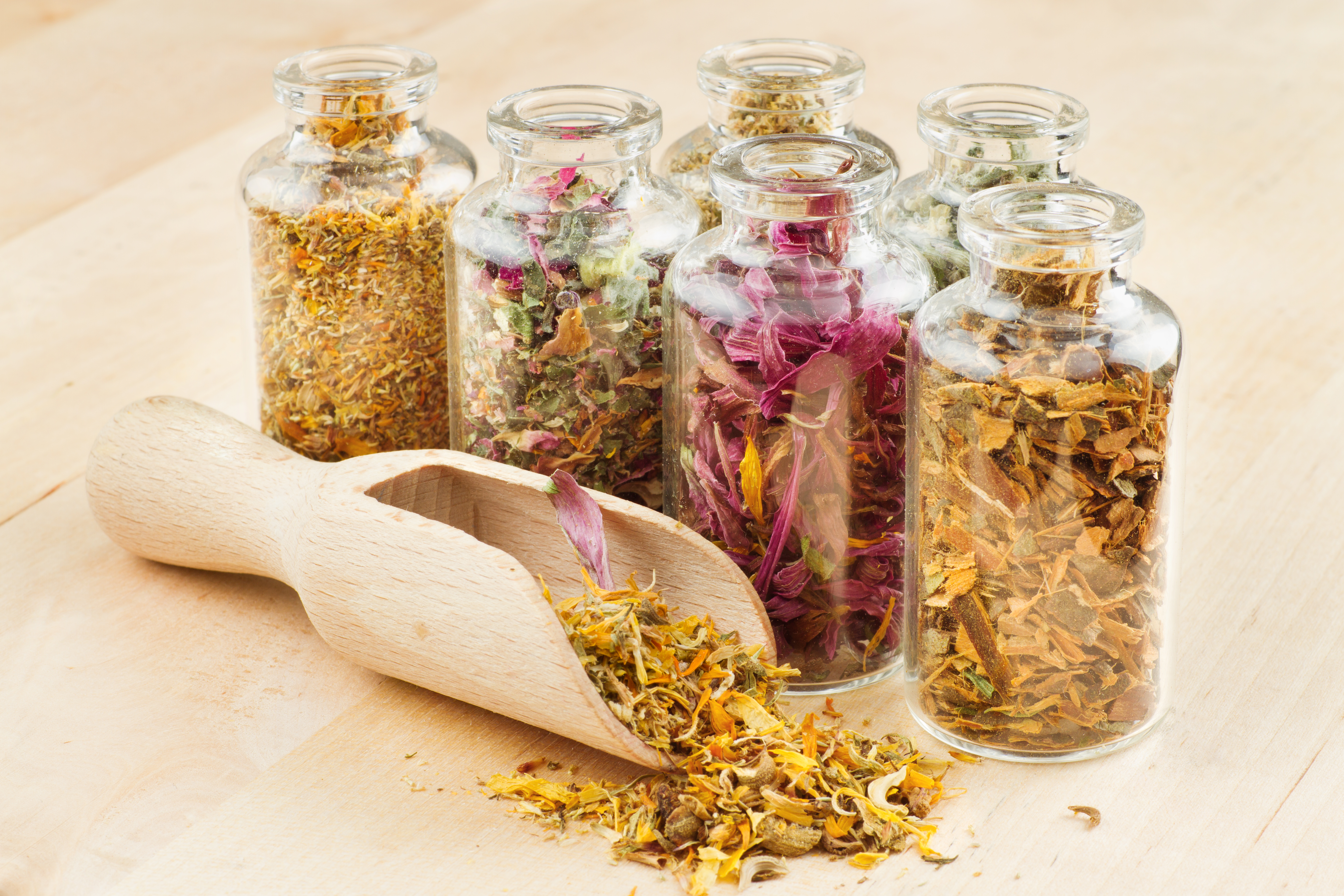 healing herbs in glass bottles and wooden scoop, herbal medicine