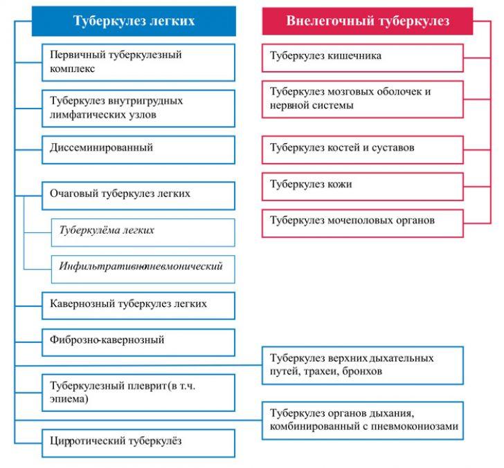 Классификация туберкулеза легких