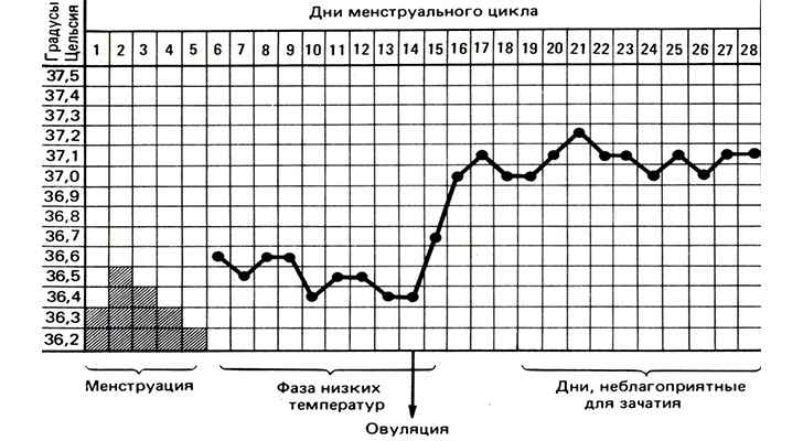 bazalnaya-temperatura-pered-mesyachnymi-full