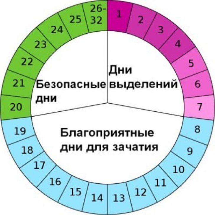 Цикл овуляция рассчитать календарь