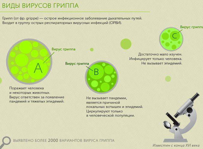 Вирусные гепатиты их виды