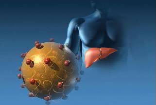 Гепатит б и ц