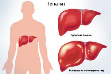 Диета при заболеваниях печени и поджелудочной железы и желчного пузыря