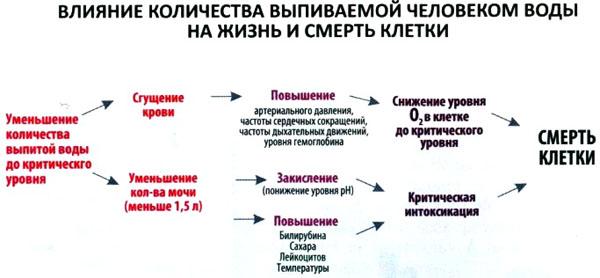 ot-chego-zavisit-razzhizhenie-spermi
