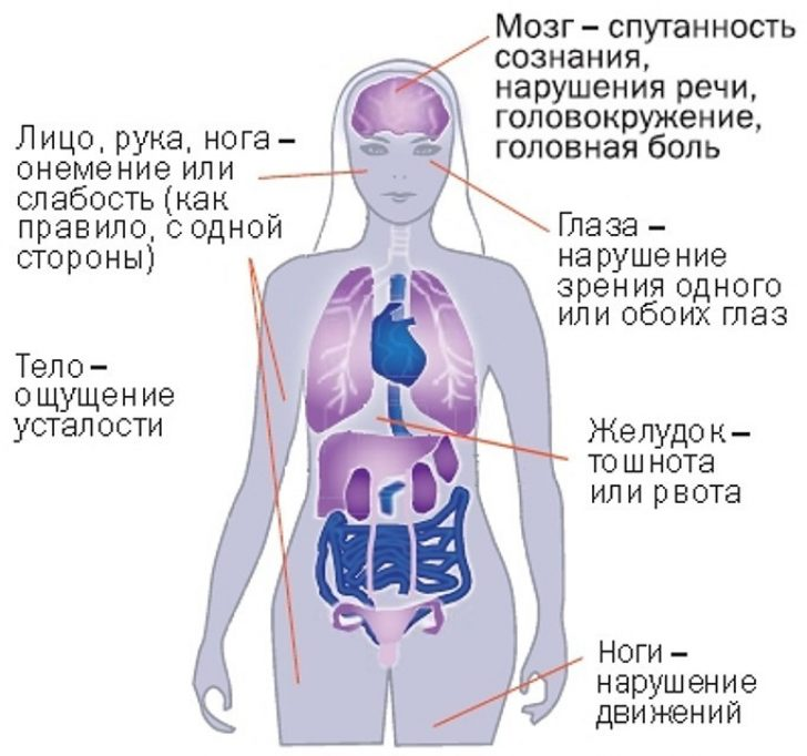 Головне управління статистики в київській області - головна