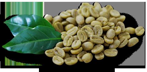 zelenyj-kofe-s-imbirjom