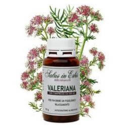 Валериана в таблетках, как применять валериану | bodystatus.