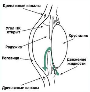 glaukoma.2