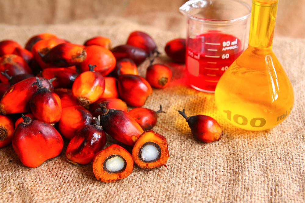 Разновидности пальмового масла