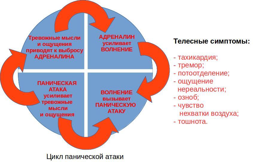 Цикл-ПА