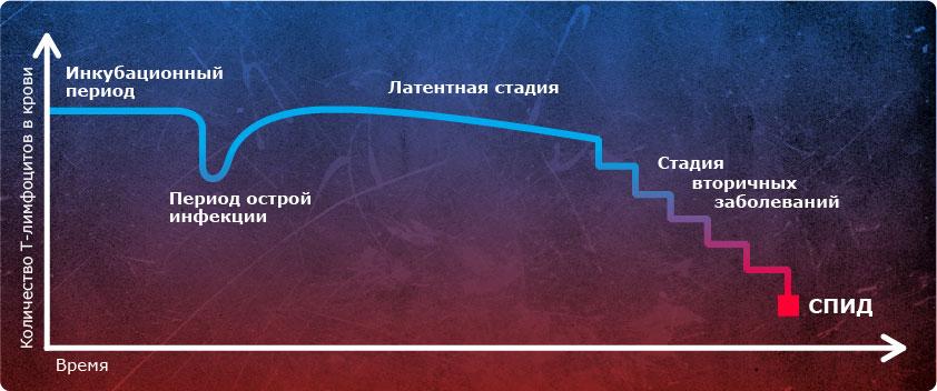 график (1)