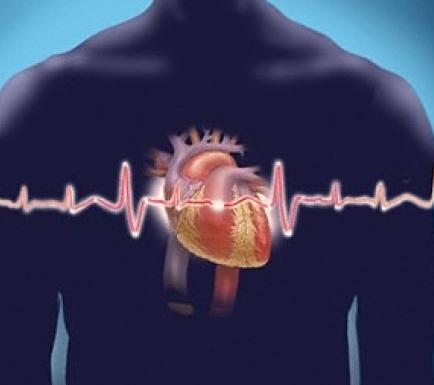 Аритмия сердца: симптомы и лечение, виды аритмий, лечение аритмии ...