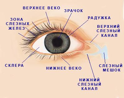 Симптомы  синдрома «сухого глаза»