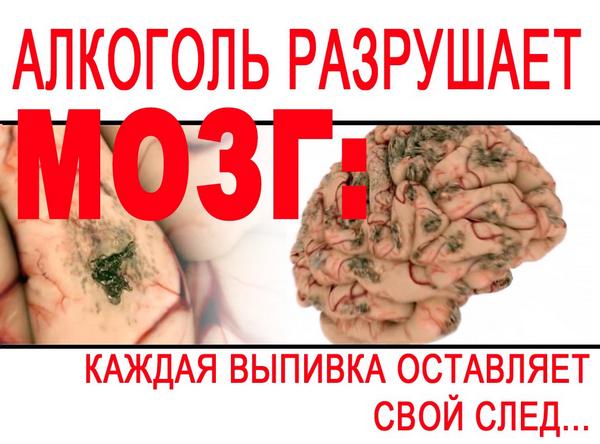 10-мозг и алкоголь