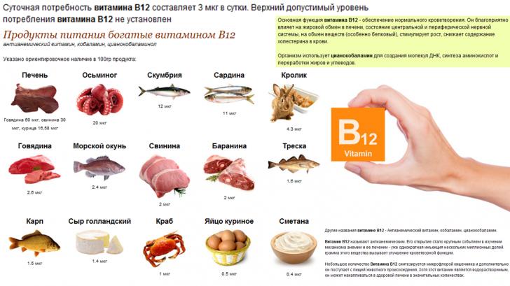Функции витамина B12