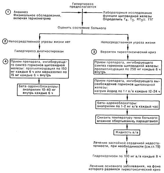 Гипертиреоз: лечение