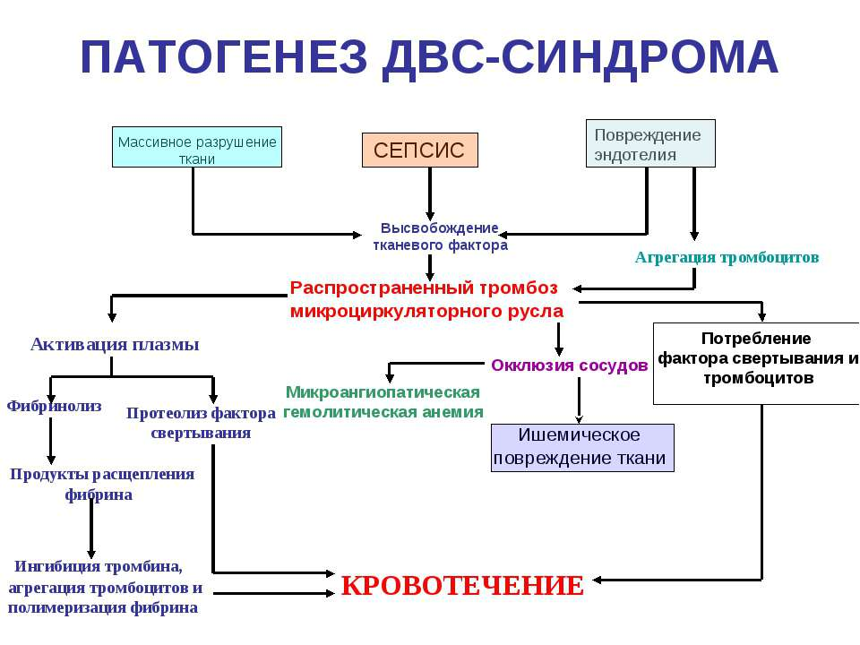 ДВС-синдром: лечение и диагностика синдрома диссеминированного ...