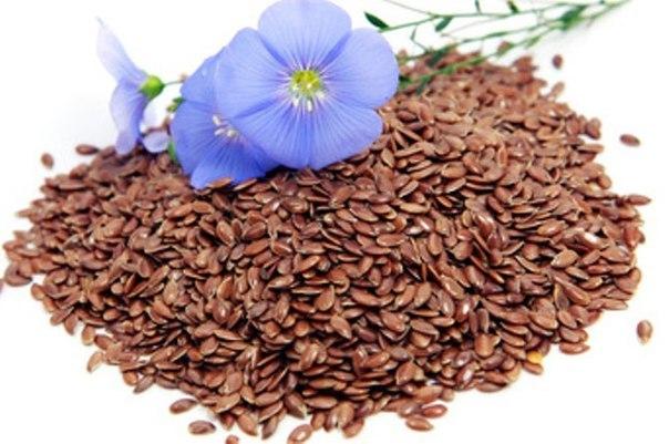 фото льна семена