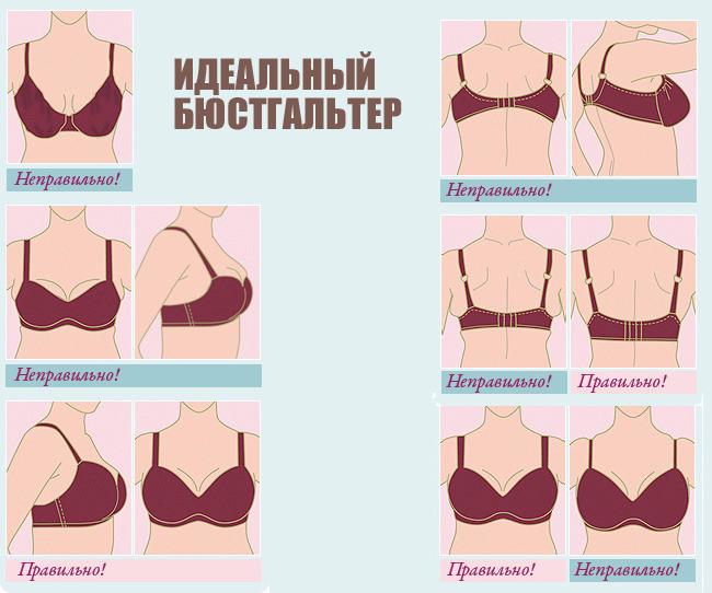 раздутые женские груди