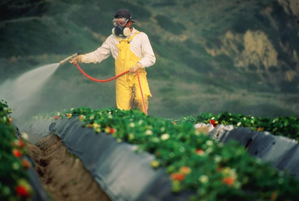 Пестициды и неврологические заболевания