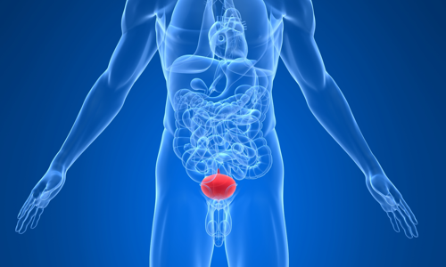 Везикулит: симптомы и лечение