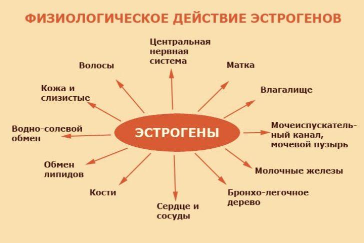 muzhchina-konchil-zreloy-zhenshine-na-pizdu
