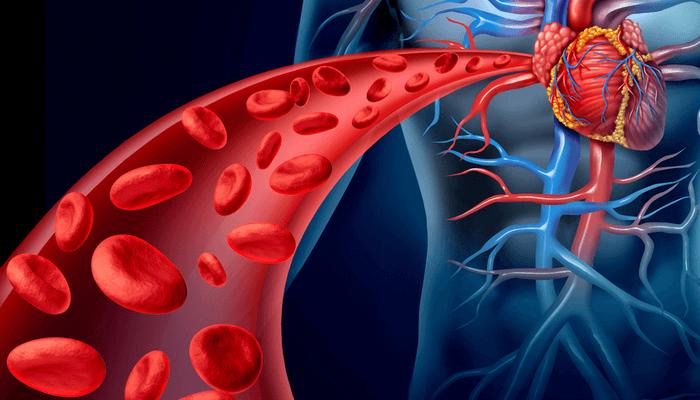 Атеросклероз нижних конечностей упражнение