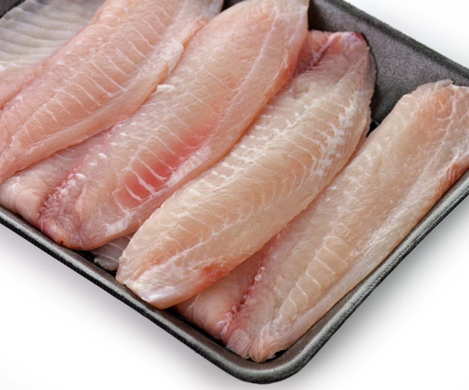 tilapia-in-pan