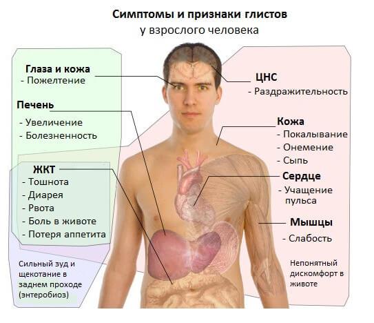 simptomy_i_ptiznaki_glistov_u_vzroslogo