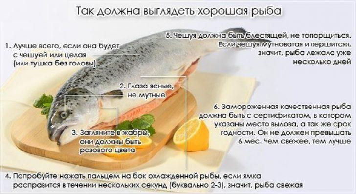 Почему соленая рыба хорошо хранится 39