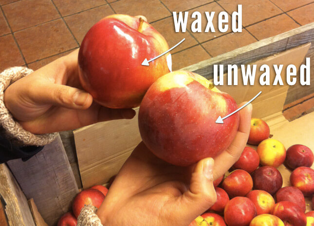 wax_apple