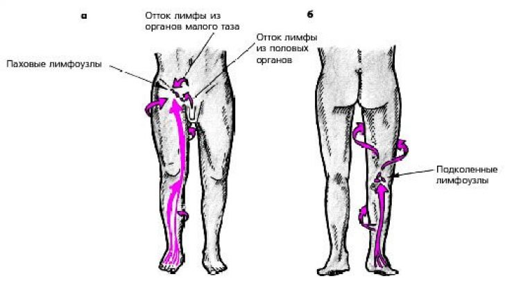 Как лечить воспаленный лимфоузел под коленом