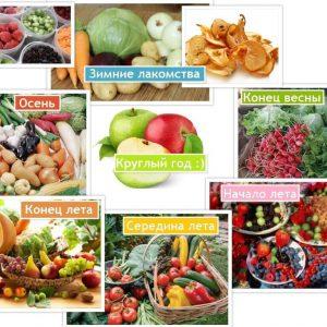 sezonnyie-ovoshhi-i-fruktyi