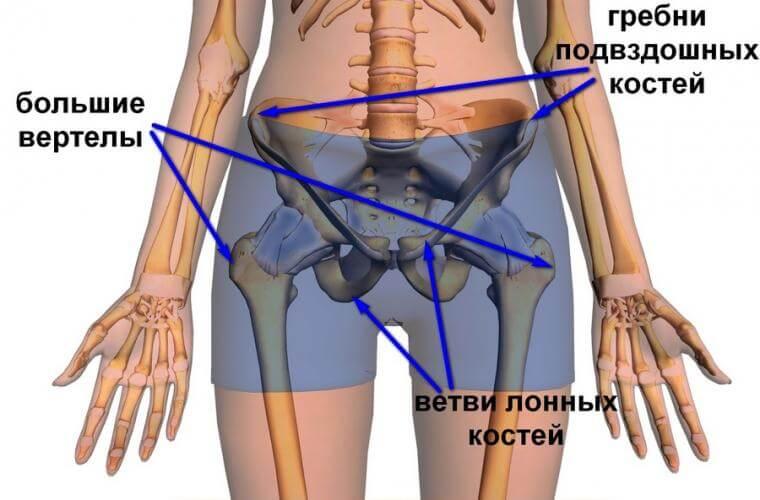 Повреждения тазобедренного сустава и бедра хроническая нестабильность плечевого сустава армия