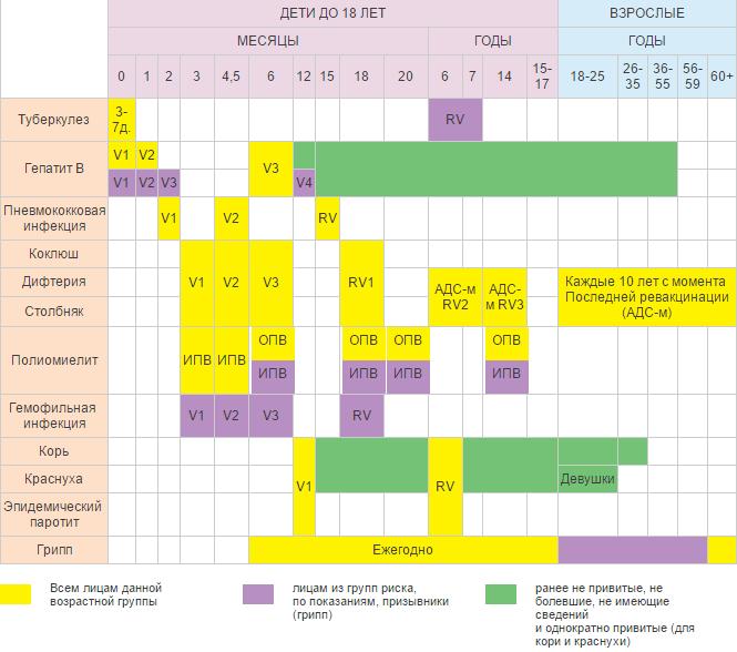 kalendar-privivok-detyam-i-vzroslym-rossiya (1)