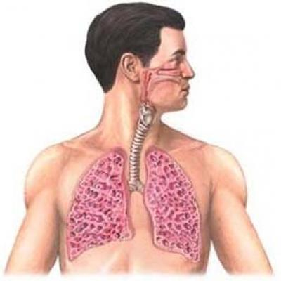 Пульмосклероз легких что это такое и как лечить