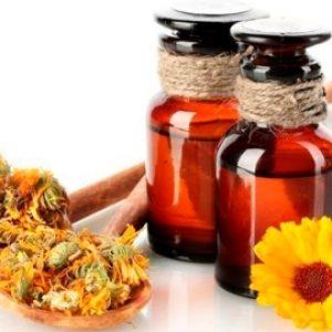 Календула – лечебные свойства, инструкция по применению и противопоказания