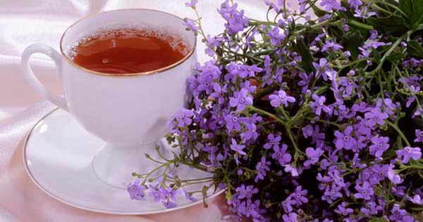 tea-chabrec