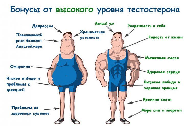 12-sposobov-podnyat-uroven-testosterona