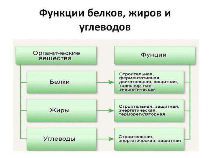 lechenie-polipov