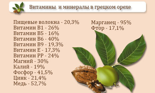 Vitaminy-i-mineraly-v-greckom-orehe