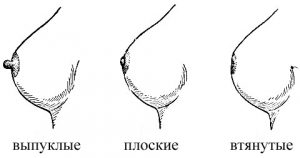 foto-vityanutih-soskov-zhenskoy-grudi-porno-dam-starushki