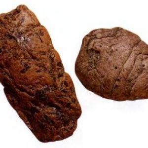 koprolit-dinozavrov