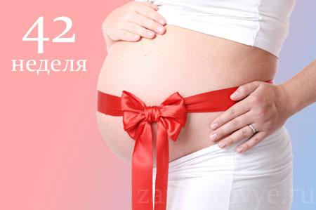 Беременность 42 недель