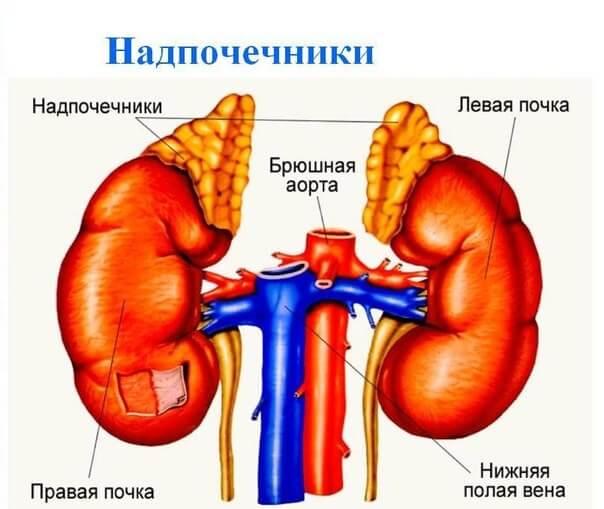feohromocitoma